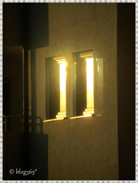 Leuchtkraft der Novembersonne